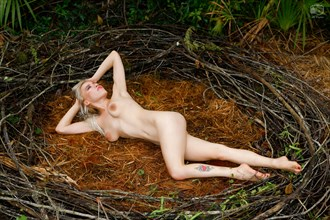 Masha Poses in the nest at Lisa Everhart's Nude Workshop, Sebring, FL, 2018 06 10 Artistic Nude Photo by Photographer jshfotos