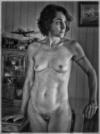 Mature Nude 3 Artistic Nude Photo by Photographer dvan
