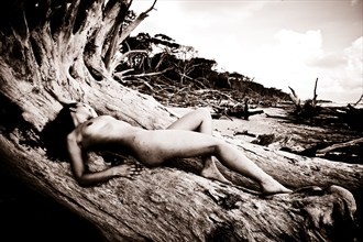 Melissa Troutt Artistic Nude Photo by Photographer Mario Peralta Photography