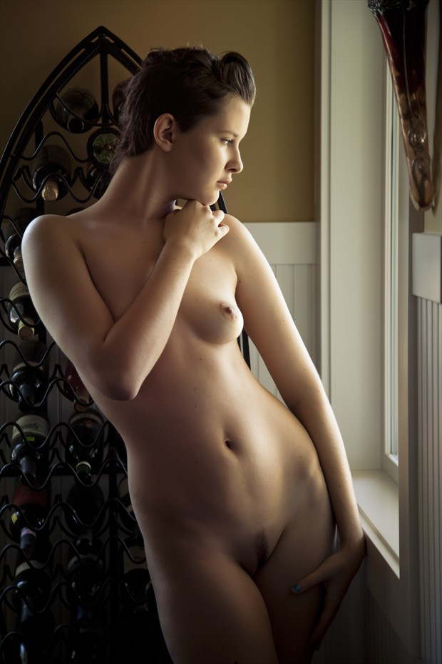 Merlot Artistic Nude Photo by Photographer D A V I D S O N