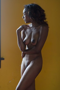 Merrique by Window Light Artistic Nude Photo by Photographer Alan H Bruce