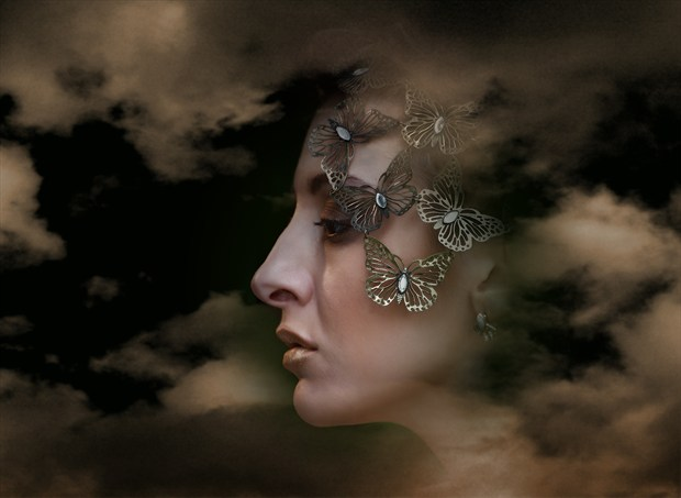 Metal Butterflies Surreal Photo by Photographer Ray Kirby