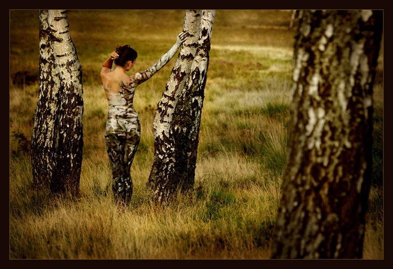 Metamorphosis Nature Photo by Photographer Laila Pregizer