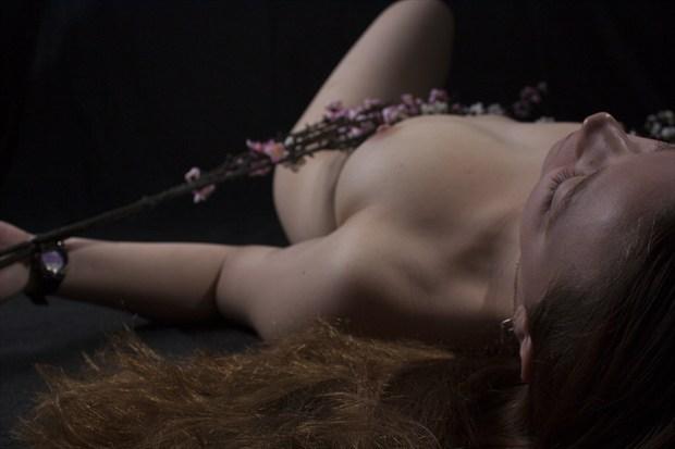 Miranda Artistic Nude Photo by Photographer LookingGlassProject