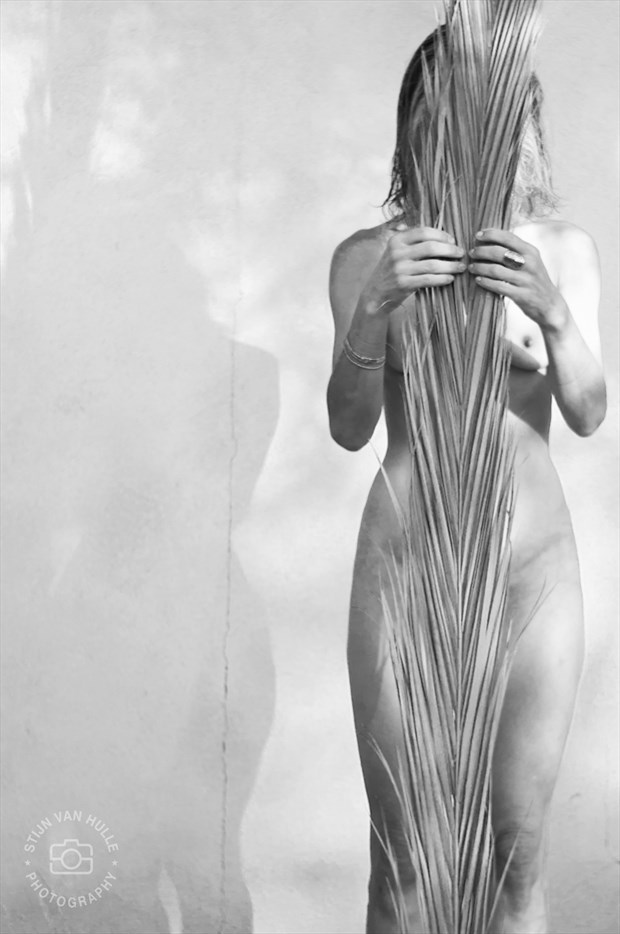 Miss A. Artistic Nude Photo by Photographer Stan