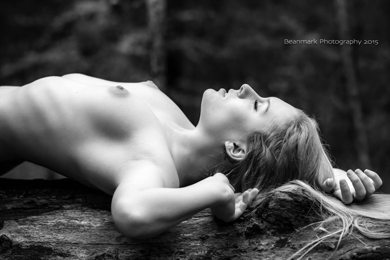 not credited by request Artistic Nude Photo by Photographer Winifred Fotos