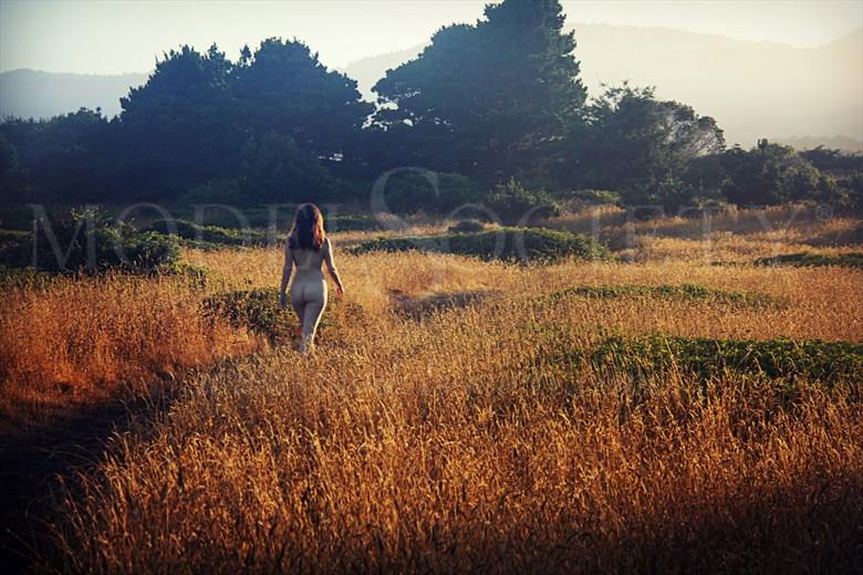 Morning Walk Artistic Nude Photo by Artist AnneDeLion