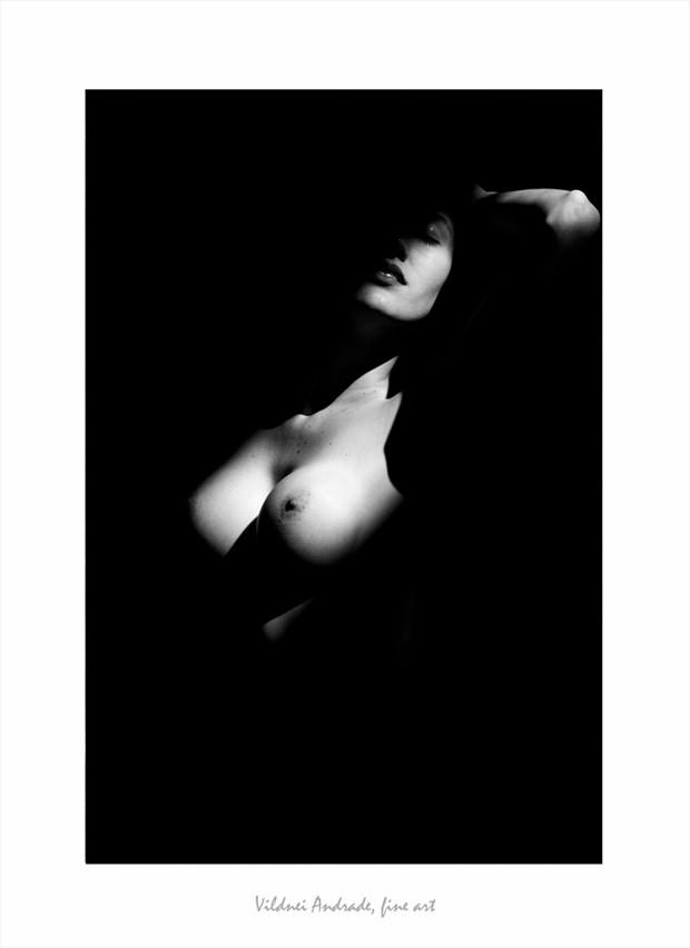 NOVOS ARES Artistic Nude Artwork by Artist VILDNEI ANDRADE