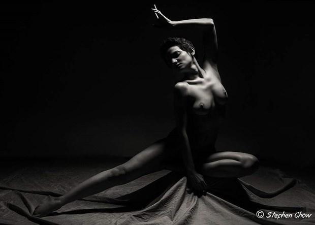 NYX Artistic Nude Artwork by Model Diana Revo