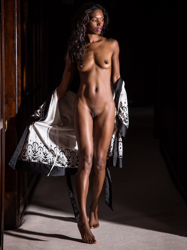Natasha in the Light. Artistic Nude Photo by Photographer Les Auld