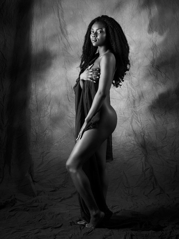 Natural! Artistic Nude Artwork by Photographer mehamlett