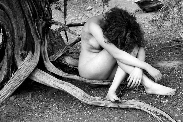 Natural Roots Artistic Nude Photo by Photographer MickeySchwartz