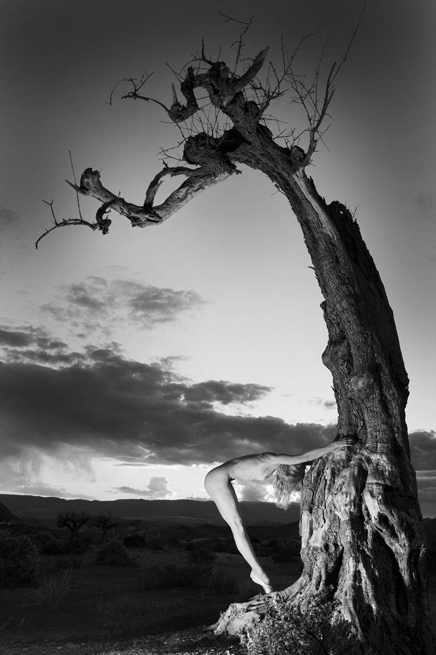 Natural trigonometry Artistic Nude Photo by Photographer John Evans