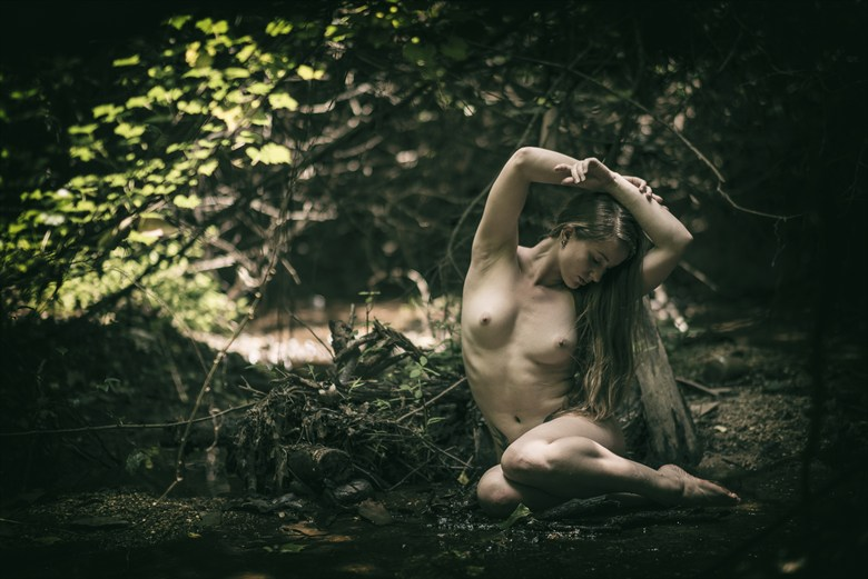 Nature Girl Artistic Nude Photo by Photographer hardrock
