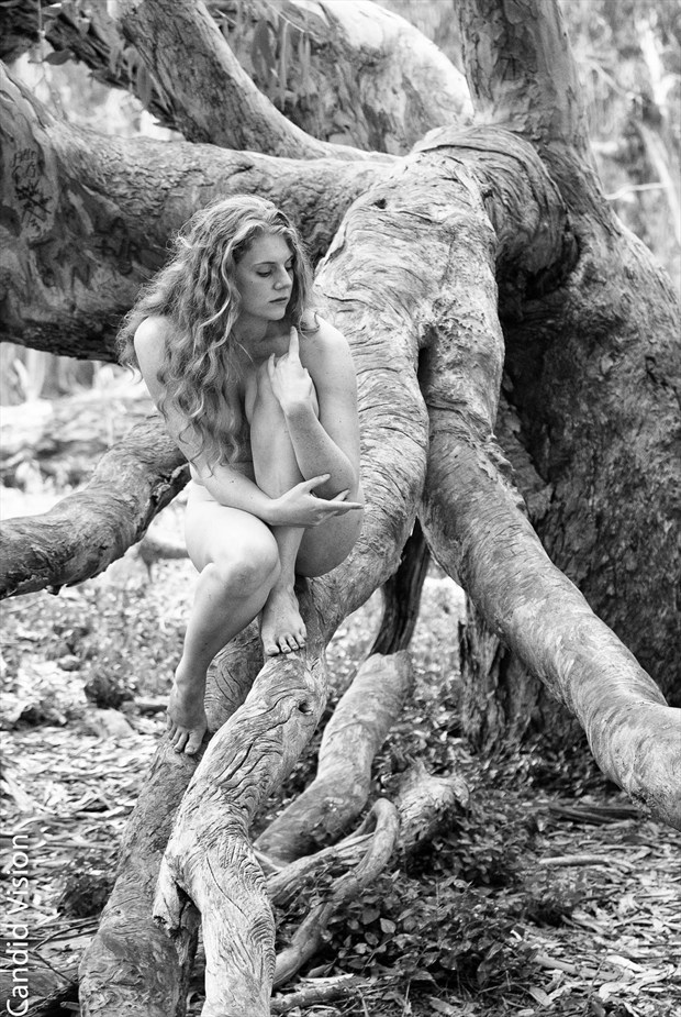 Nature Implied Nude Photo by Photographer Candidvision