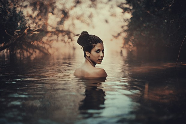 Nature Natural Light Photo by Photographer Alessio Albi