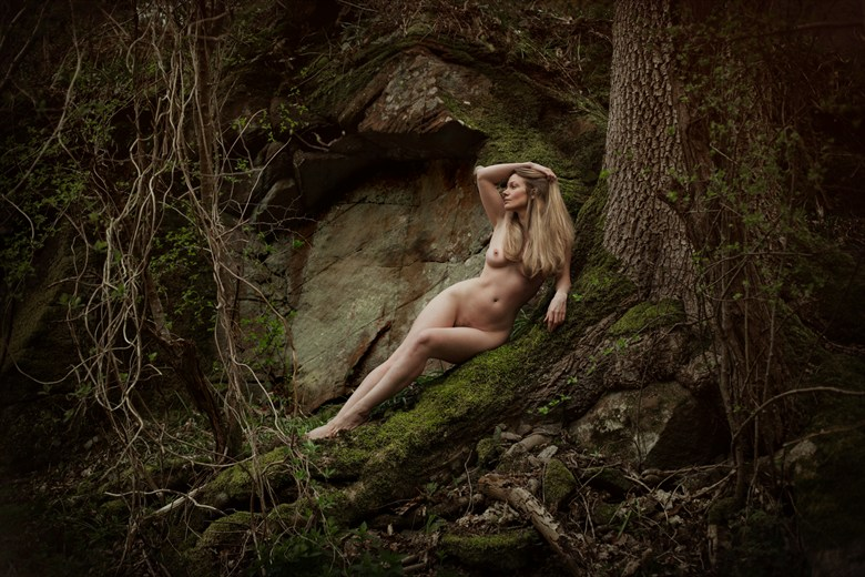 Nature Natural Light Photo by Photographer David Charles