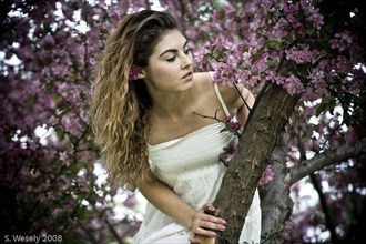 Nature Sensual Photo by Photographer blankphotog