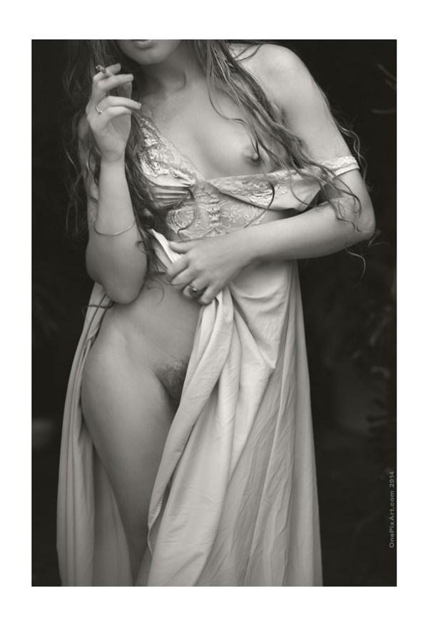 Nettie Artistic Nude Photo by Photographer OnePixArt