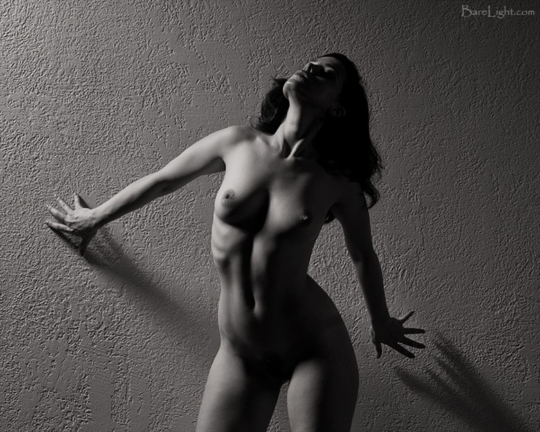 Nicole Artistic Nude Photo by Photographer BareLight