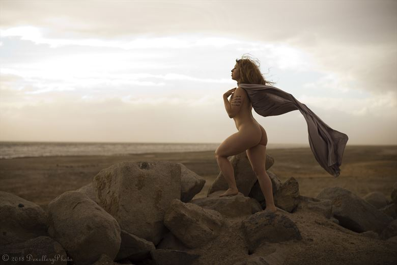 November 2018 @ Salton Sea Artistic Nude Photo by Model Alexandra Vincent