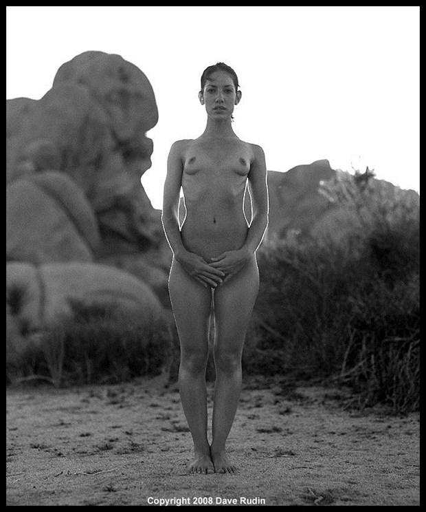 Nude, California, 2008 Artistic Nude Photo by Photographer Dave Rudin