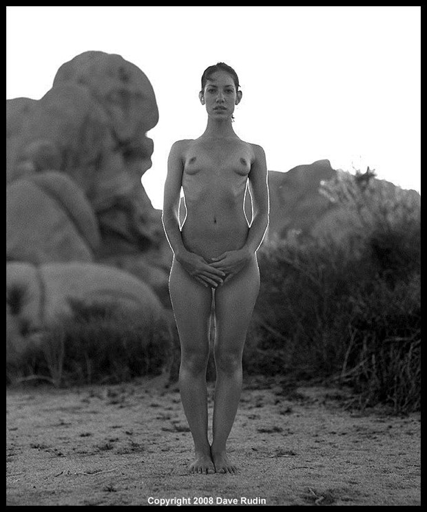 Nude, California, 2008 Artistic Nude Photo by Photographer Dave Rudin