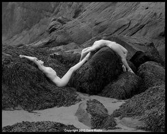 Nude, New Brunswick, 2013 Artistic Nude Photo by Photographer Dave Rudin