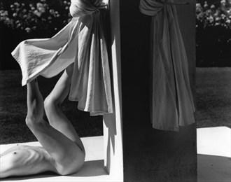 Nude   Light to Dark Artistic Nude Photo by Photographer Kim Weston