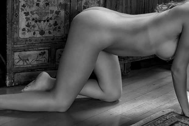 Nude Against Wood Artistic Nude Photo by Photographer Philip Turner