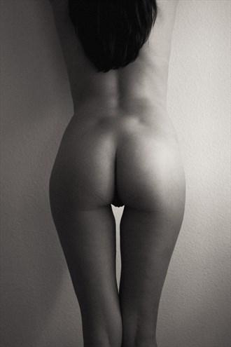 Nude Artistic Nude Artwork by Photographer luisaguirre