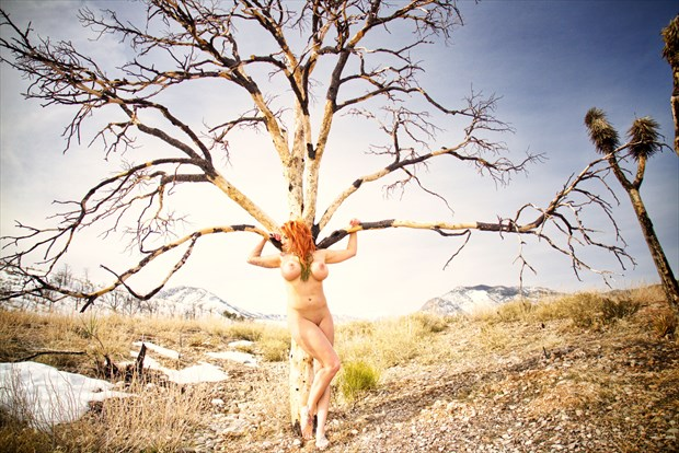 Nude Tree Artistic Nude Photo by Photographer Barry Gallegos