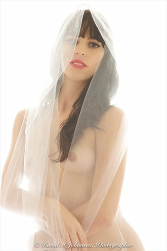 Nude Under Vail Artistic Nude Photo by Photographer Red Jade