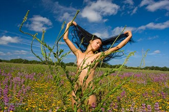 Nude in Dense Wildflower Field Artistic Nude Photo by Photographer Visual Delights