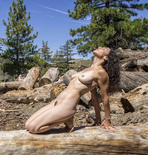 Nude in Nature Artistic Nude Photo by Photographer pevets62