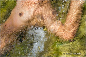 Nude in Rushing Water Artistic Nude Photo by Photographer Visual Delights