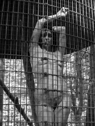 Nude in cage Artistic Nude Artwork by Model Isabelvinson