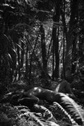 Nude in the Jungle Artistic Nude Photo by Photographer Opp_Photog