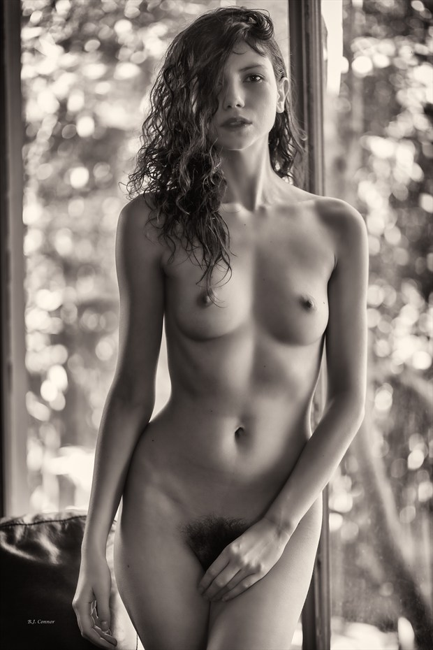 Nude in the Window Artistic Nude Photo by Photographer Aspiring Imagery