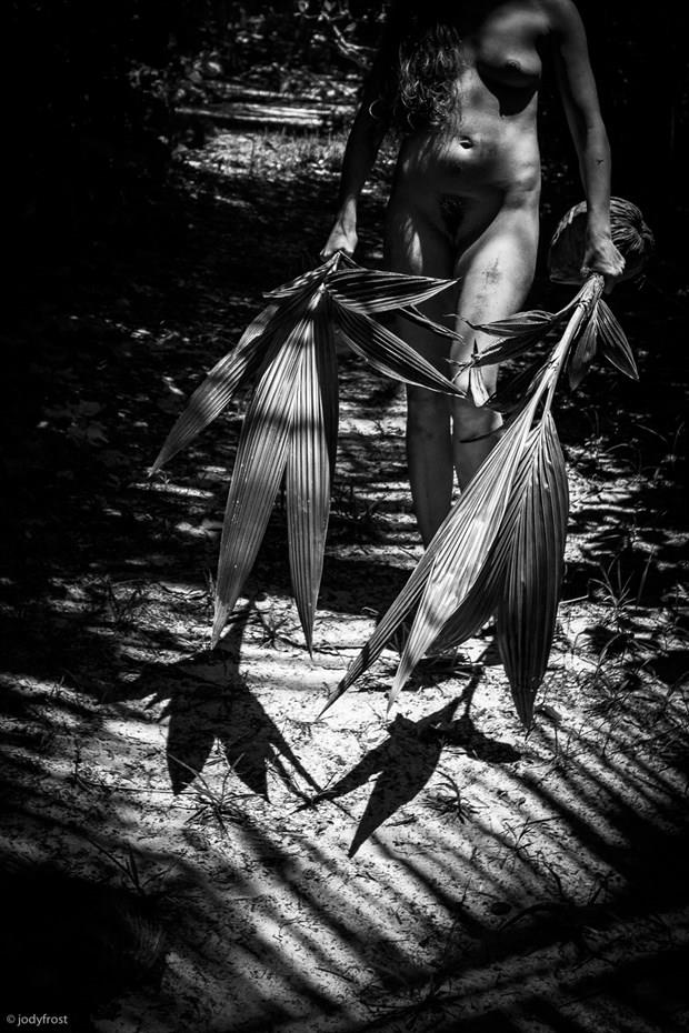 Nude w Palm Fronds Artistic Nude Photo by Photographer jody frost