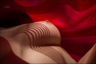 Nude with Shadows and Sinuous Red Drapery Artistic Nude Photo by Photographer Visual Delights