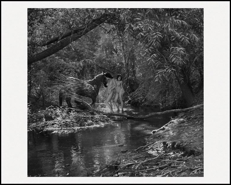 Oasis Artistic Nude Photo by Artist LightBrushedImages
