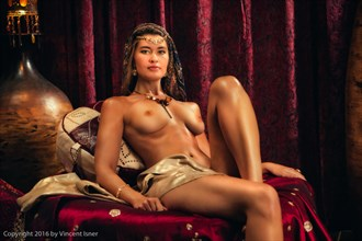Odalisque %232 Artistic Nude Photo by Photographer Vincent Isner