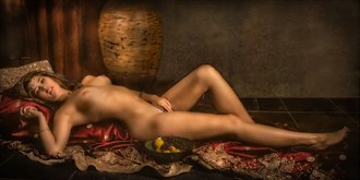 Odalisque %233 Artistic Nude Photo by Photographer Vincent Isner