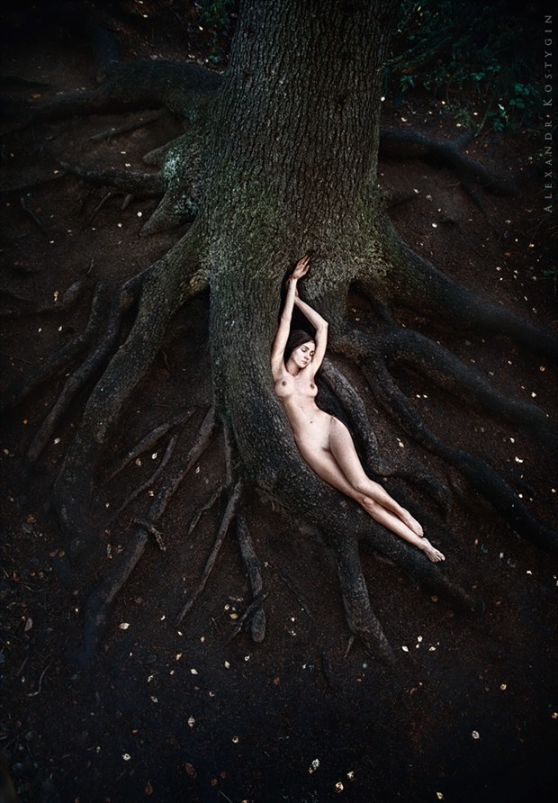 Old tree Artistic Nude Photo by Photographer Alexandr  Kostygin