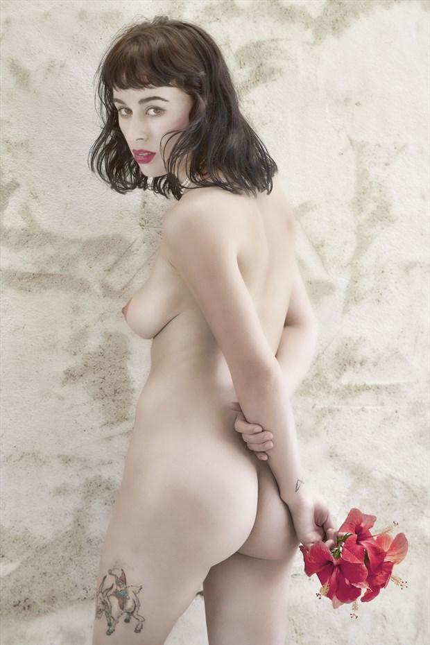Olive in Sicily  Artistic Nude Photo by Photographer StromePhoto