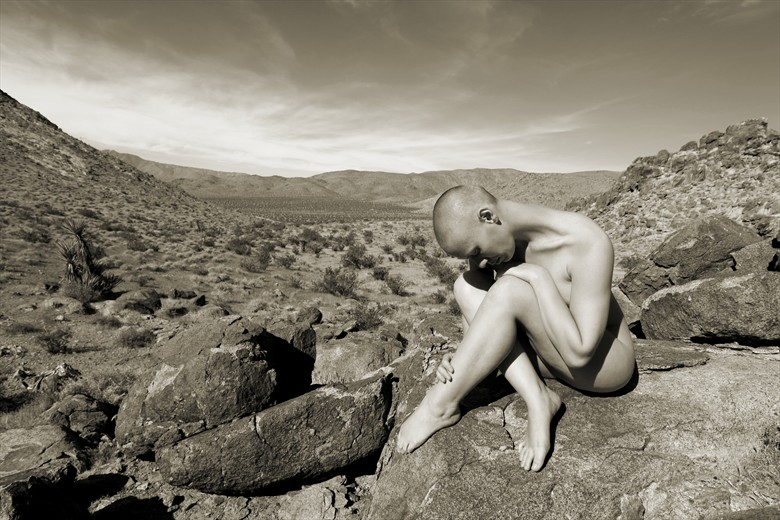 One Artistic Nude Photo by Photographer David Winge