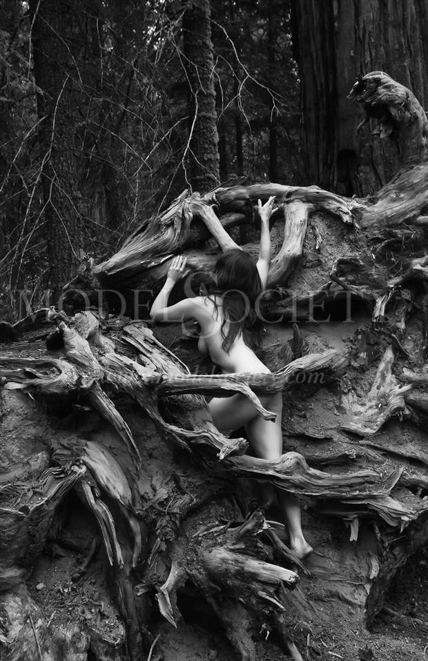 One with Nature Artistic Nude Photo by Photographer MSlygh