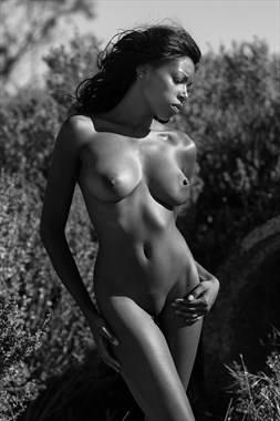Outdoors Artistic Nude Photo by Photographer Bill Lemon