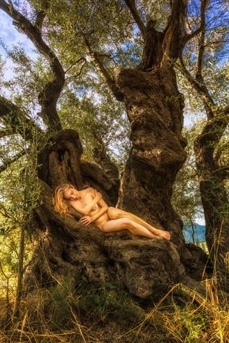 Paliama Olive Rapture Self Portrait Photo by Photographer TreeGirl